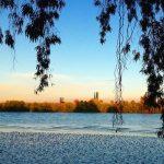 Mención Especial. ´Playa del #Guadalquivir entre la Esclusa y Coria del Río´. Autor: @prdlv91