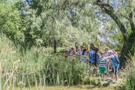 Actividades EMASESA Día Mundial del Medio Ambiente en El Arboreto