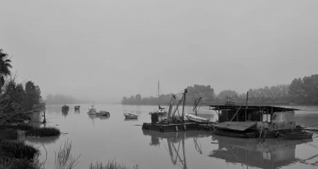 Tercer Premio. Entre niebla - Jose Antonio Gonz+ílez de Tena