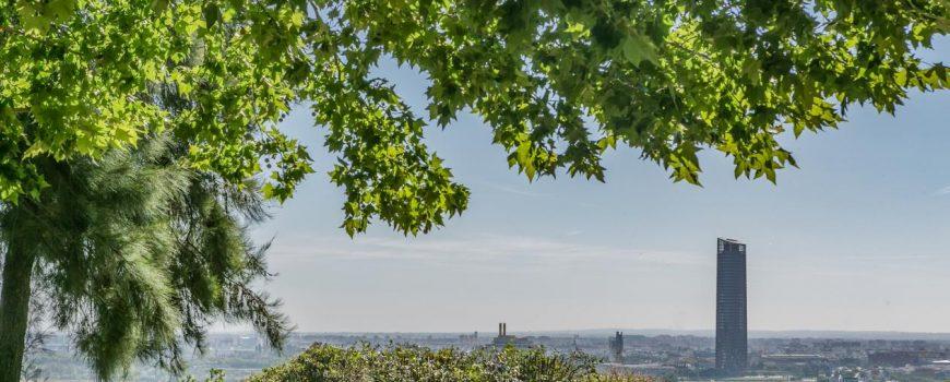 vistas desde el arboreto