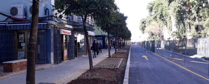 Proyecto Avenida Greco Acerado