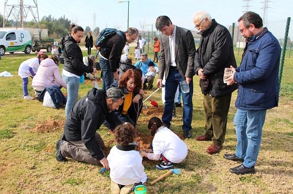 Plantacion participativa