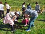 Emasesa junto al Ayuntamiento, colegios y ecologistas reforestan el Aliviadero del Zacatín en Alcalá de Guadaíra